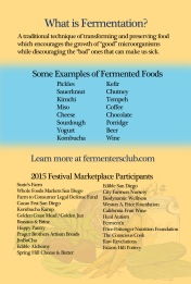 SDFF-2015-4x6-POSTER-SIDE2
